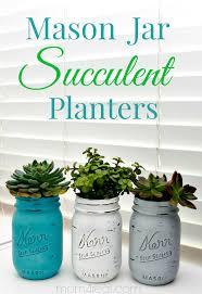 mason jar succulents planters indoor gardening idea mom 4 real