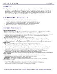 Resume Professional Statement Examples by Sales Resume Summary Examples Free Resume Example And Writing