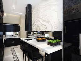 Black Gloss Kitchen Cabinets by Kitchen Admirable Design Of Modern Home Kitchen Ideas Black
