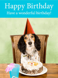 birthday cards for dogs birthday cards birthday greeting cards