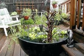 Pot Garden Ideas Large Container Garden Ideas Garden Ridge Locations Autouslugi Club