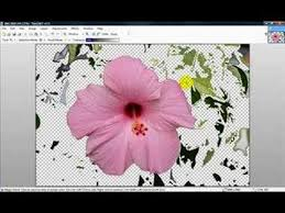 paint net basics removing background in paint net youtube