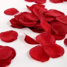 Silk Rose Petals Free Petal Garden Decorative Silk Rose Petals Freebies In Your Mail