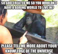 Chimp Meme - condescending chimpanzee memes quickmeme