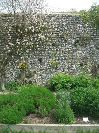 30 best garden ideas images on pinterest landscaping ideas