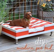 small pet beds small pet beds atticmag