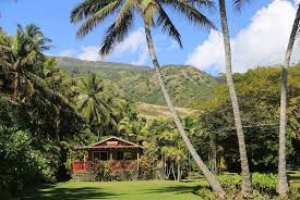 dream hawaii airbnb rentals to help you ease into fall grindtv com