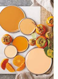 Pretty Orange Best 25 Persimmon Color Ideas On Pinterest Burnt Orange