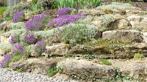 How To Build A Rock Garden Building A Rockery Garden Build A Rockery Building A Rock Garden