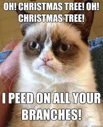 Cat Christmas Tree Meme - oh christmas tree oh christmas tree i peed on all your branches
