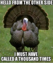 Hunter Meme - the best turkey hunting memes only at turkeyhunting com