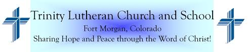 constitution and by laws trinity lutheran church and