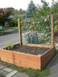 pictures vegetable garden boxes best image libraries