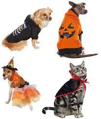 Halloween Costumes Promo Code 33 Howl Oween Images Dog Pumpkin Dog Treats