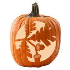 free pretty fall pumpkin stencils pumpkin carving fall pumpkins