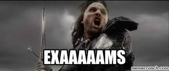 Aragorn Meme - exams