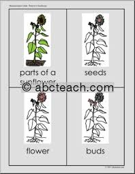 1696 best montessori images on pinterest homeschooling