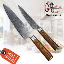 haoye 2 pcs kitchen knives set japanese 73 layers blade damascus