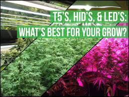 hid u0027s led u0027s and florescents choosing your perfect grow light