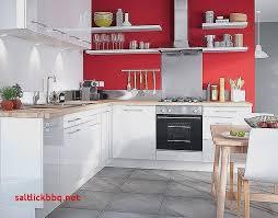 castorama meubles de cuisine meuble de cuisine castorama premier prix pour idees de deco de