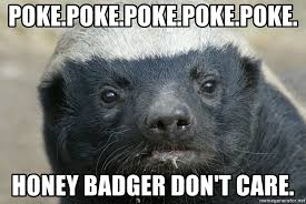 Honey Badger Memes - poke poke poke poke poke honey badger don t care staring honey