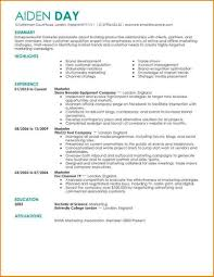 Good Resume Examples by Very Good Resume Examples