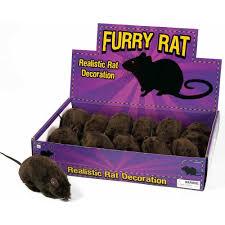 Halloween Prop Manufacturers by Amazon Com Black Furry Rat Prop Toys U0026 Games