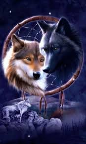wolves dreamcatcher lwp android apps on play