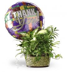 balloon delivery jacksonville fl jacksonville balloons bouquet delivery by gifttree
