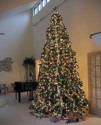 12 foot christmas tree 12 foot christmas trees holidays wizard