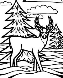 kid drawing deer coloring kid drawing deer coloring