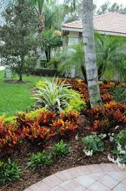 landscaping tropical outdoor garden design with whittlesey