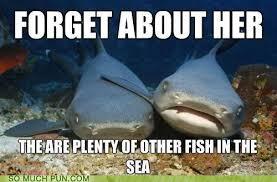 Captain Obvious Meme - he has a point puns pun pictures