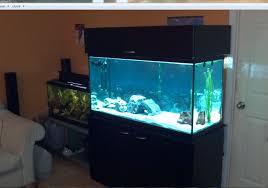 Home Aquarium Decorations Fish Tank Surprising Aquarium Stand White Photo Inspirations With