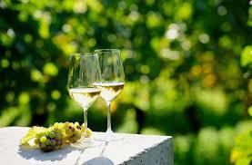 50 italian white wines for summer