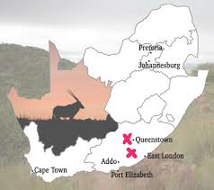 Port Elizabeth South Africa Map by Trophy Bow Hunting Safari In The Eastern Cape Of South Africa