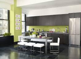 kitchen paint color schemes and techniques pictures ideas
