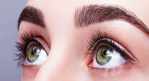 How To Make Eyebrows Grow Back Fast How To Grow Thick Eyebrows Naturally U2013 Best Home Remedies