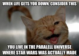Star Wars Cat Meme - when life gets you down consider this you live in the paralell