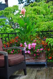 container gardening container gardening dirt simple