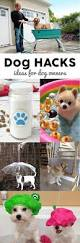 Make Bathtime Fun For Your Dog Dog Hacks Smart Diy Ideas For Dog Owners Chiens Pinterest