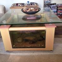Fish Tank Living Room Table - overwhelming living room home interior design show affordable