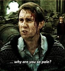 Neville Longbottom Meme - harry potter mean girls neville longbottom meangirls seamus