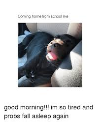 I M So Tired Meme - coming home from school like good morning im so tired and probs