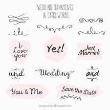 wedding ornament and catchword collection vector free