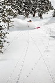205 best women skiing u0026 snowboarding images on pinterest ski