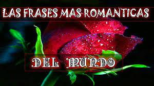 bonitas de rosas rojas con frases de amor imagenes de amor facebook rosas rojas frases romanticas del mundo populares sobre amor