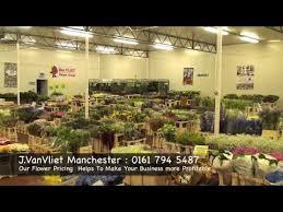 Wholesale Flowers J Vanvliet Manchester Wholesale Flowers Youtube