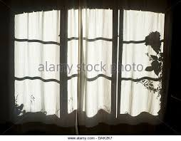 Curtains Block Heat Curtains Silhouette Window Shadows Stock Photos U0026 Curtains