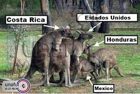 Costa Rica Meme - costa rica enciende el partido con memes